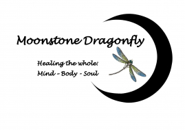 Moonstone Dragonfly Banner